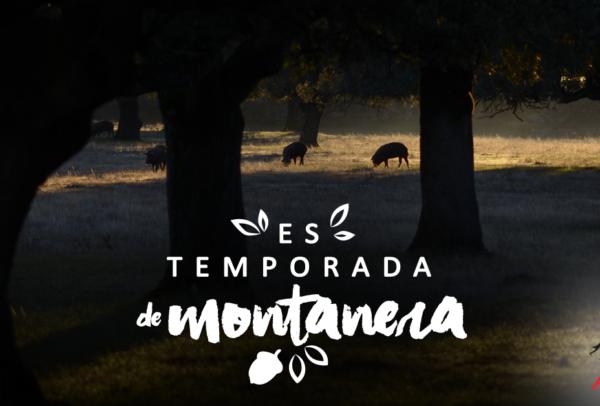 Montanera