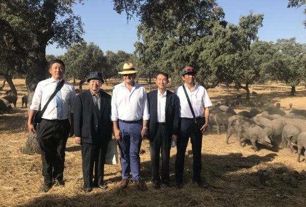 Visita Delegación Japonesa (1)