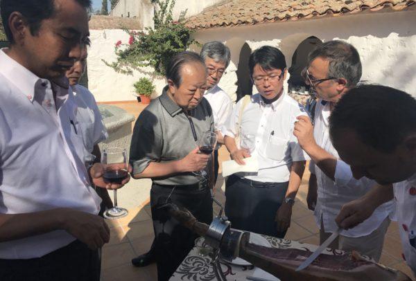 Visita Delegación Japonesa (2)